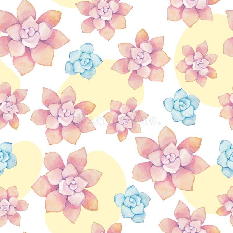 Mod?le sans couture de vecteur des ?l?ments floraux dans un style d'aquarelle Succulents peints dans l'aquarelle illustration stock