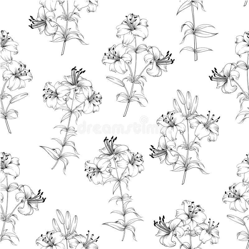 Mod?le sans couture des fleurs de lis Fond floral avec les lis de floraison d'isolement sur le fond blanc Configuration sans join illustration de vecteur
