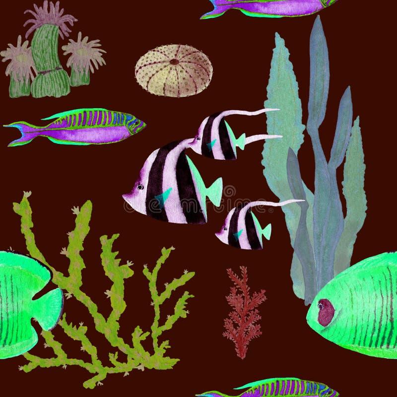 Mod?le seemless tir? par la main dans l'?l?ment naturel du monde de mer d'aquarelle Les coquilles de coraux p?chent sur le fond r illustration de vecteur