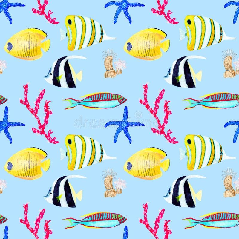 Mod?le seemless tir? par la main dans l'?l?ment naturel du monde de mer d'aquarelle Les coquilles de coraux p?chent sur le fond d photos stock