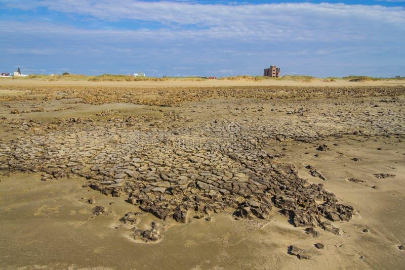 Mod przy piaskiem w Cassino plaży zdjęcie stock