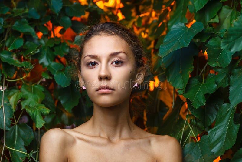 Moda portreta krótkopęd piękna nastoletnia dziewczyna zdjęcie stock