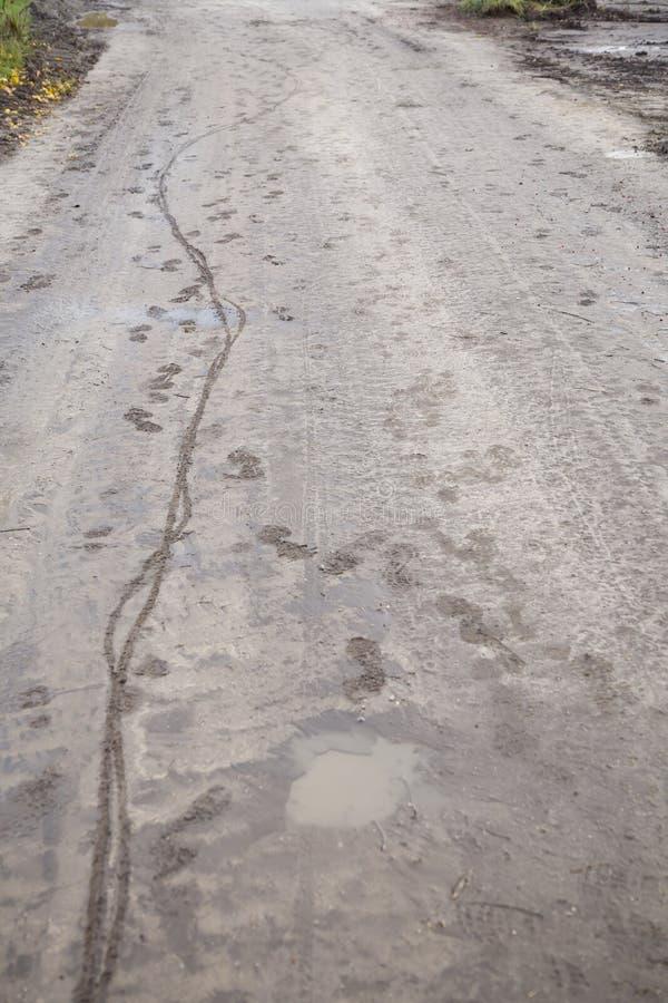 Modderige weg met fietspadden en voetafdrukken stock foto's