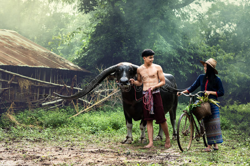 Mode de vie d'agriculteur sur la campagne photos stock