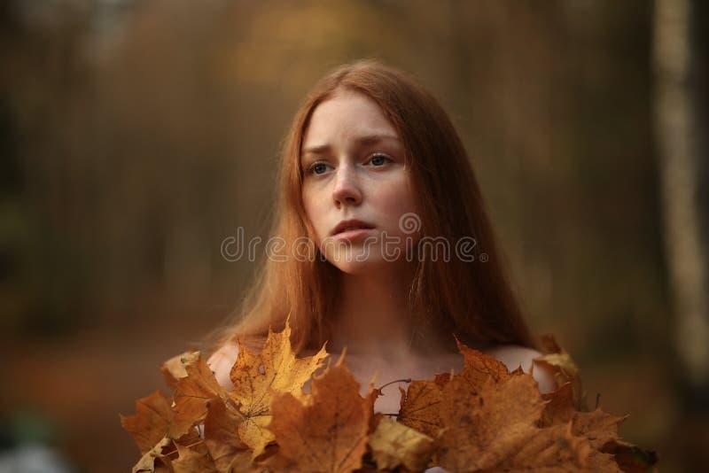 Mode-Herbstmodell, Fall-Blätter kleiden, Schönheits-Mädchen an stockfotos