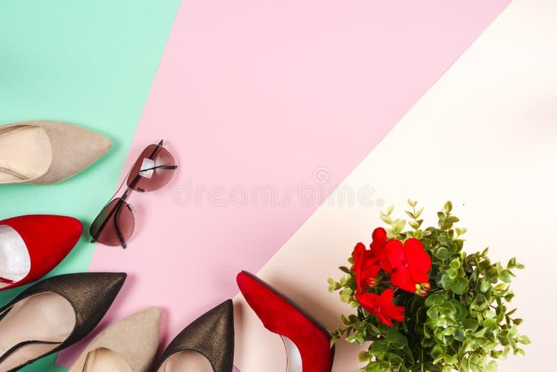 Mode olika skor för kvinnlig på höga häl fotografering för bildbyråer