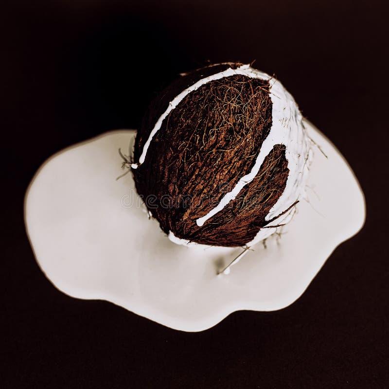 Modekokosnöten på svart bakgrund med kokosnöten mjölkar royaltyfri foto