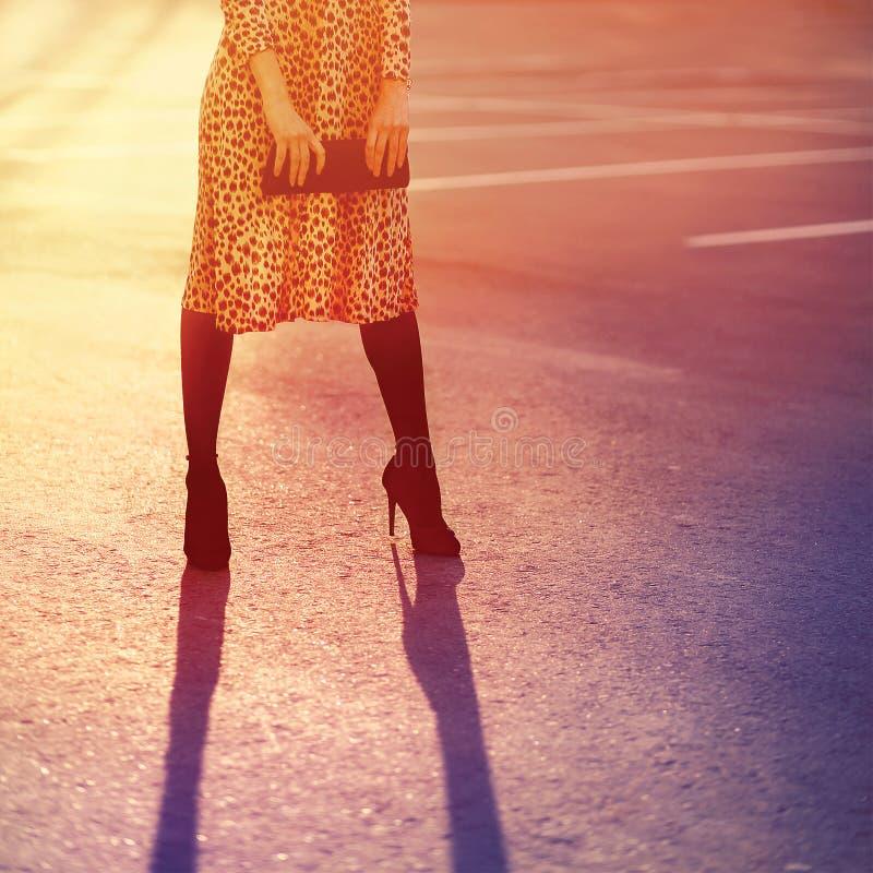 Modekvinna i leopardklänning med kopplinghandväskan som poserar afton royaltyfri bild