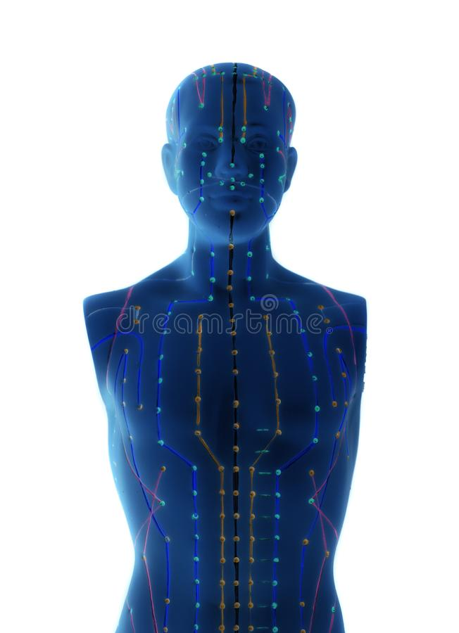 Model akupunktury medycznej człowieka obrazy stock