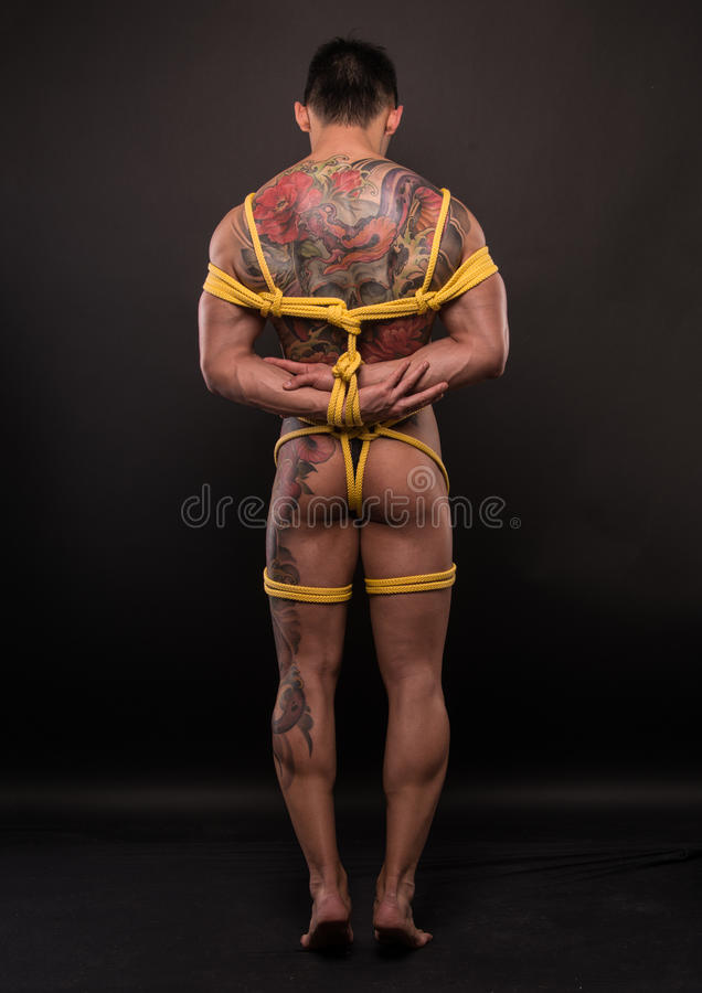 Model in bondage. Muscled male model with ropes around his body stock photos