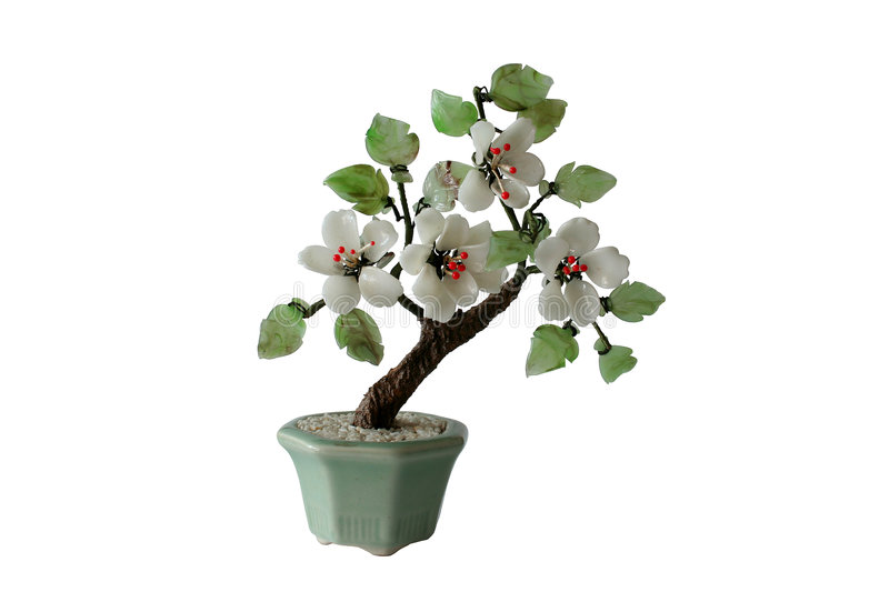Model of bonzai tree (isolated) royalty free stock photography