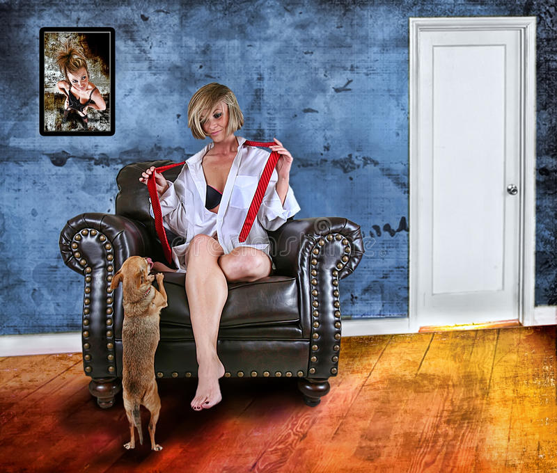 Model and dog royalty free stock image