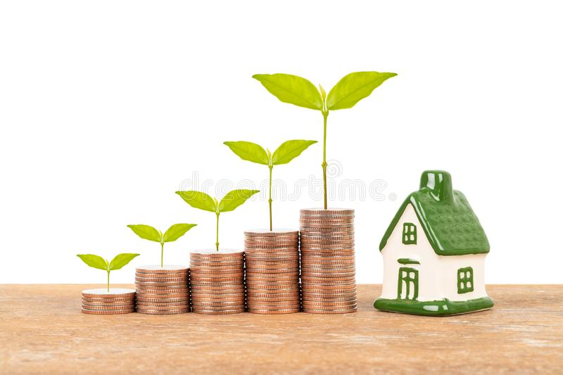 Model house and coin stack with tree on white background mortgage saving concept.  stock photography