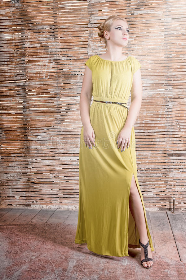 Download Model in a long dress stock photo. Image of abandoned - 26228034