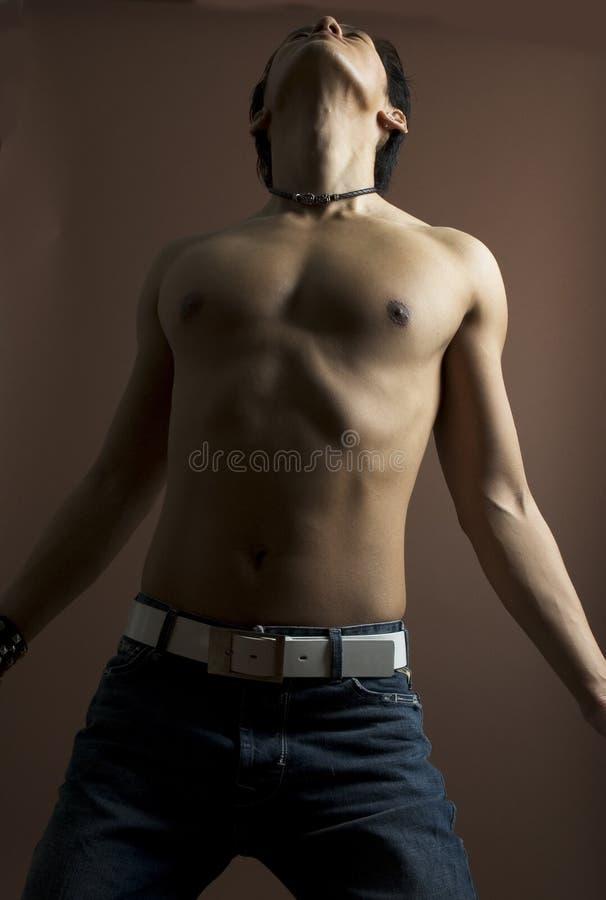 Model mâle 10 image libre de droits
