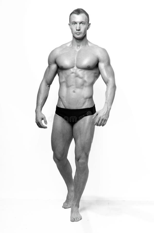 model muskulöst royaltyfri bild