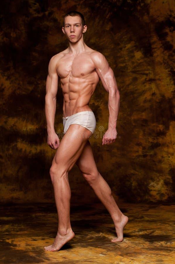 model muskulöst royaltyfria bilder