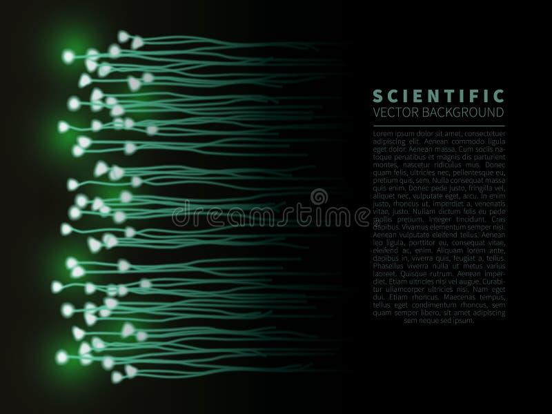 Model of neural system royalty free illustration