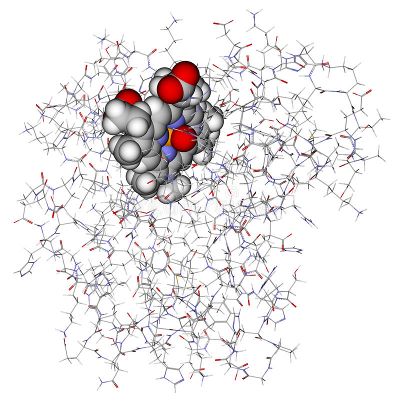 model protein för myoglobin 3d stock illustrationer