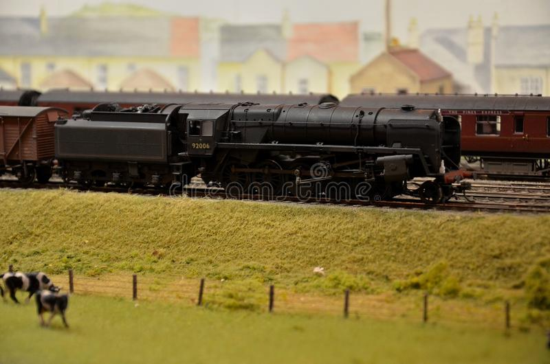 Model train steam engine & coal car with jersey cows. A weathered black model railway steam engine locomotive and coal wagon pulling a goods train. Passenger royalty free stock images