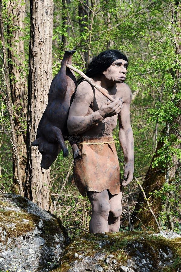 Model van Neanderthaler Hunter Carrying Pig royalty-vrije stock afbeelding
