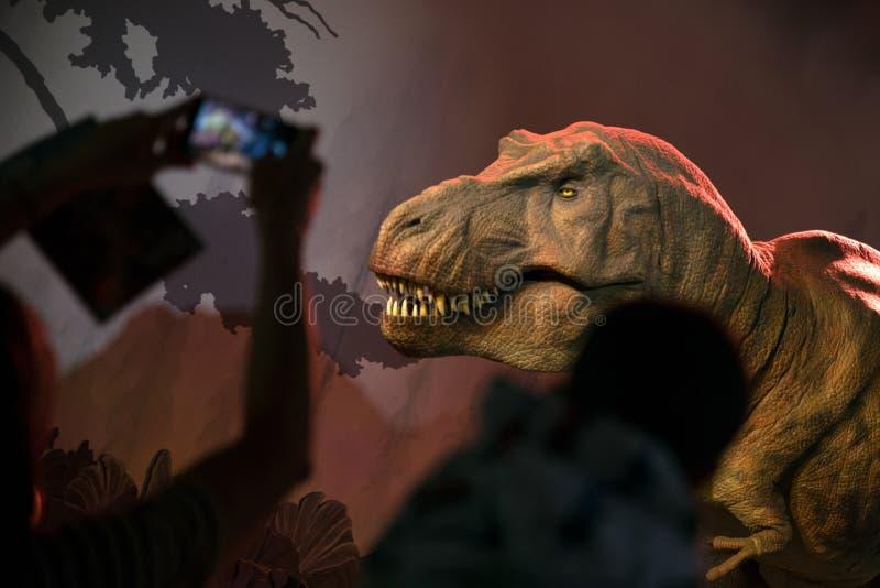 Model van Tyrannosaurussen Rex stock afbeelding