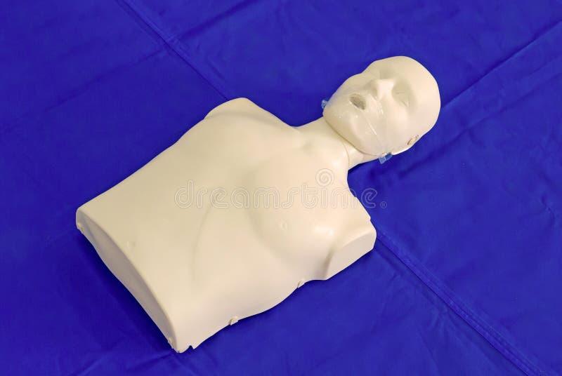 modelagem do manequim usada no treinamento do CPR fotografia de stock royalty free