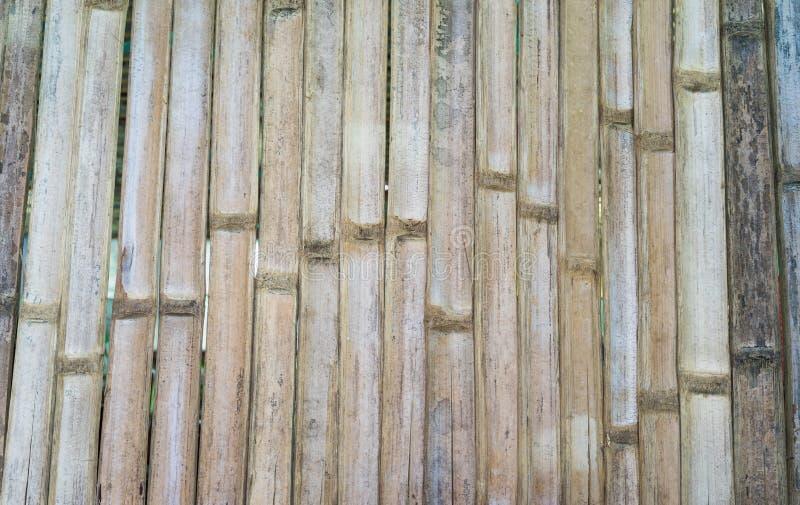 Modele o fundo da parede feito da árvore de bambu secada fotos de stock royalty free