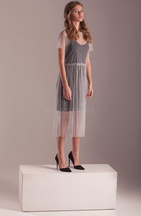 Modelez dans la robe transparente et des talons stylets posant sur le CCB rose images stock