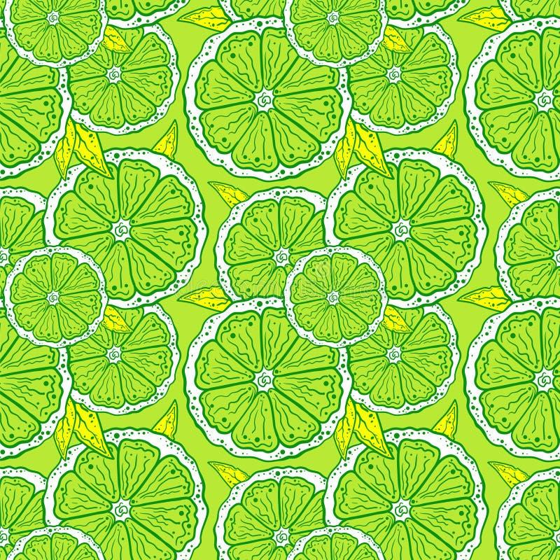 Modell av konturer av apelsinskivor på en grön bakgrund vektor illustrationer