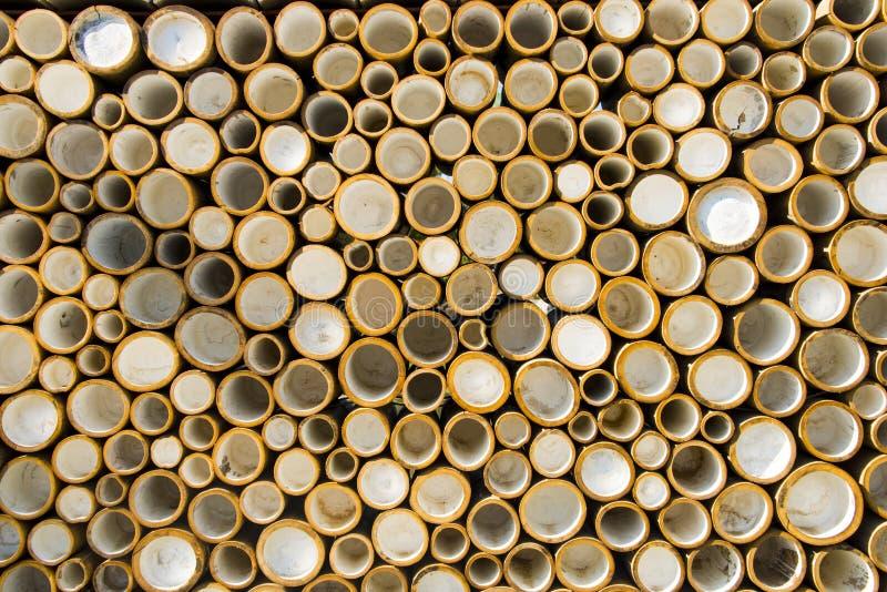 Modell av rund bambu royaltyfri bild