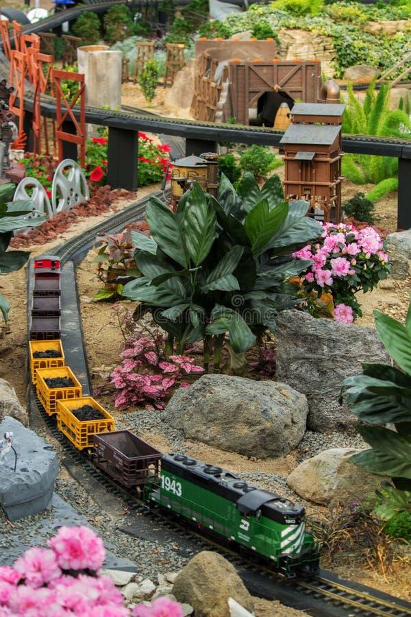 Modell Cargo Train fotografering för bildbyråer