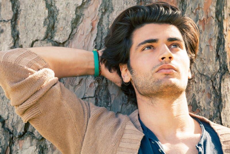 Modell des gutaussehenden Mannes entspannte sich das Stillstehen auf einem Baumstamm lizenzfreie stockfotos