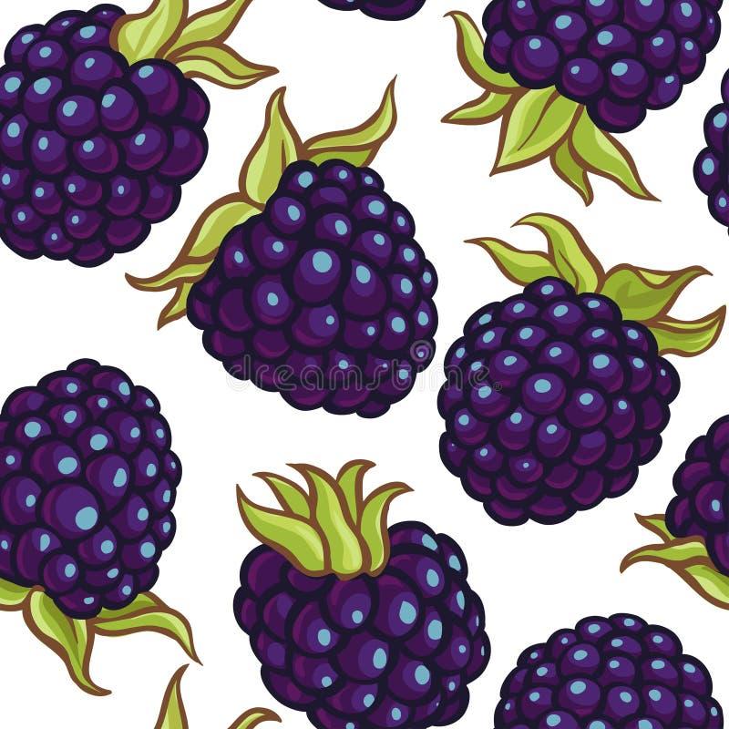 Modell för Blackberry bärvektor royaltyfri illustrationer