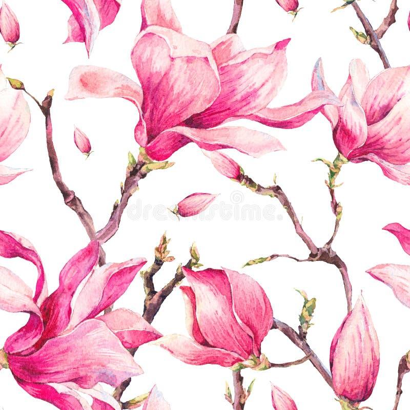 Modell för blom- vår för vattenfärg sömlös med magnolian royaltyfri illustrationer