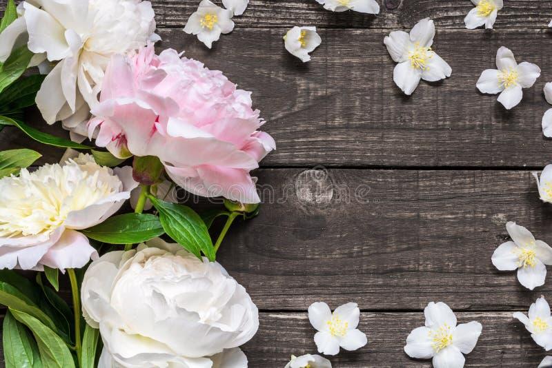 Modell för bröllopinbjudan- eller årsdaghälsningkort som dekoreras med rosa och krämiga pioner och jasminblommor arkivbild