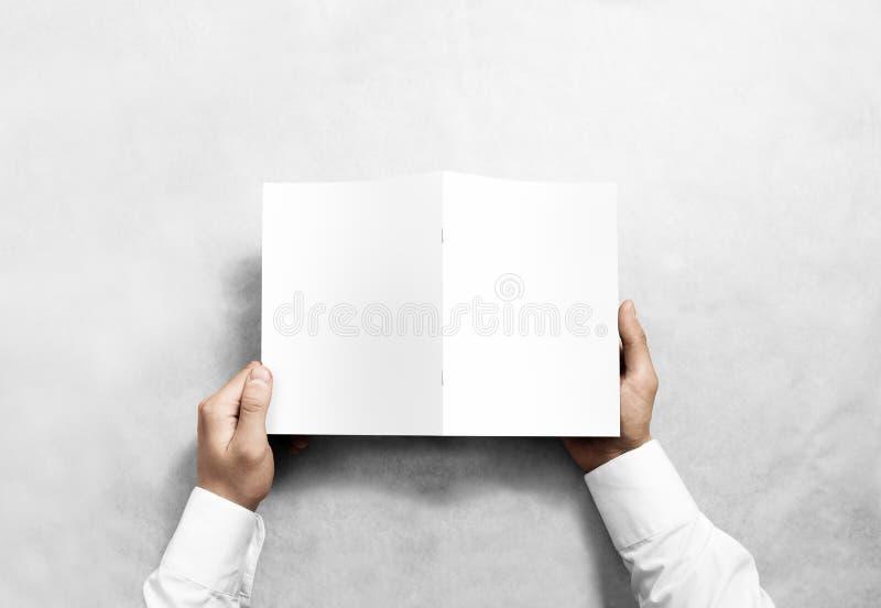 Modell för broschyr för handinnehavmellanrum vit, sikt för tillbaka sida royaltyfria foton