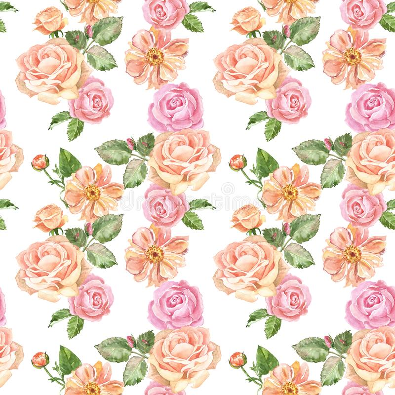 Modell för delikata rosor för vattenfärg sömlös i tappningstil Pastellfärgade rosa trädgårdblommor på vit bakgrund Romantiskt try royaltyfri illustrationer