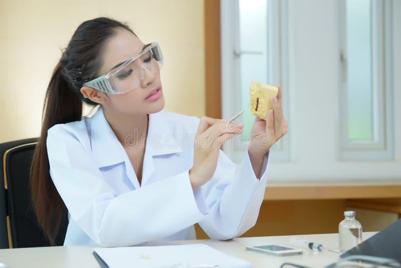 Modell för ensemble för tandprotes för ung härlig kvinnatandläkare hållande arkivfoton