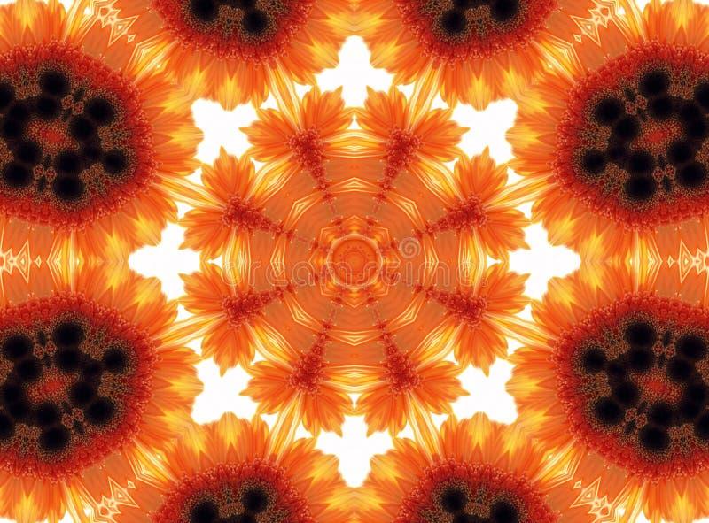 Modell för Gerber blommaabstrakt begrepp royaltyfri illustrationer