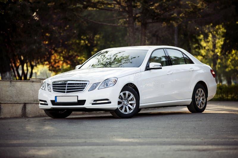 Modell för grupp för Mercedes benz e arkivbilder