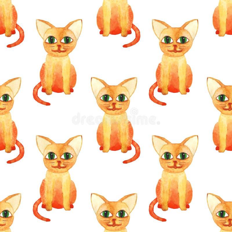 Modell f?r gullig katt f?r vattenf?rg s?ml?s p? vit bacground royaltyfri bild