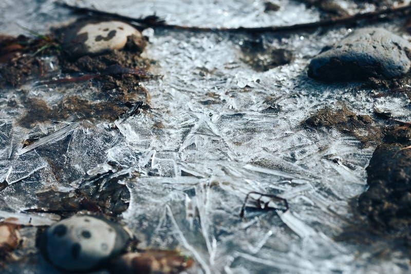 Modell för iskristaller över djupfryst pöl på vårfloden arkivfoto