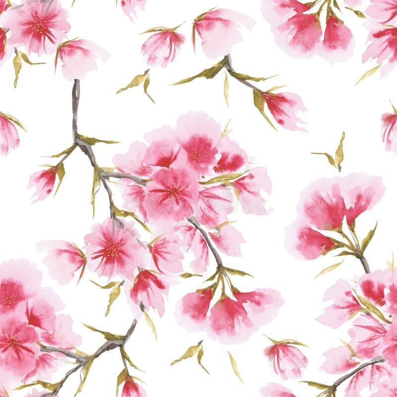 Modell för körsbärsröd blomning för vattenfärg sömlös stock illustrationer