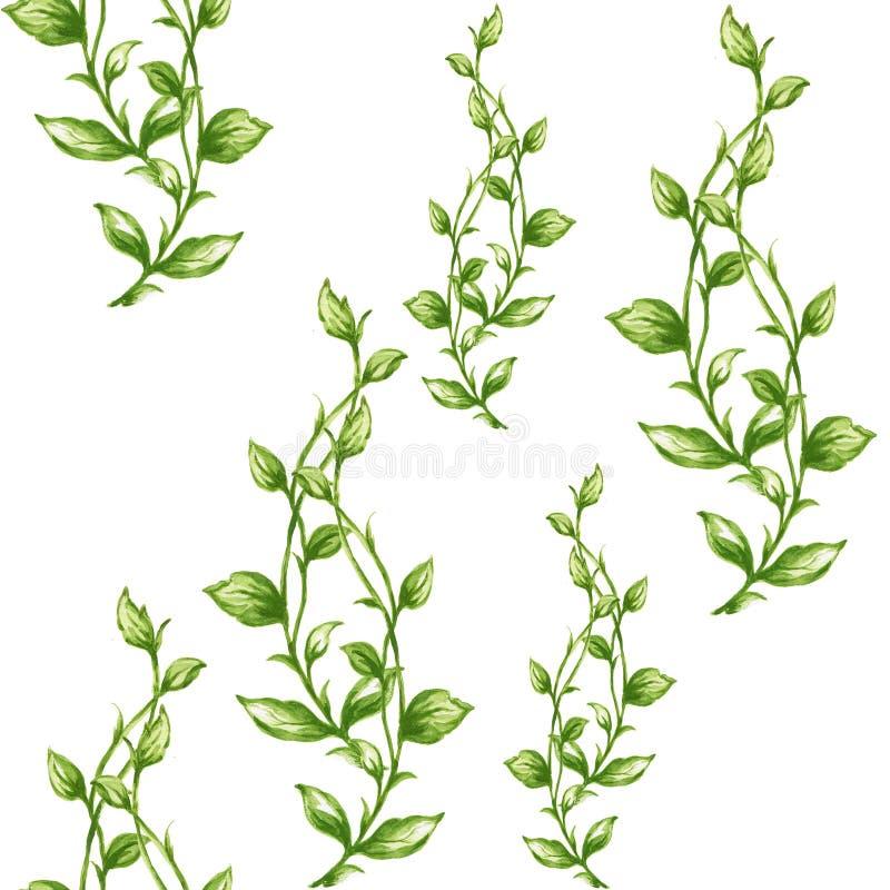 Modell för sidor för akvarellgouachegräsplan royaltyfri illustrationer