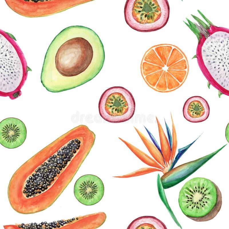 Modell för tropiska frukter för vattenfärg sömlös Handen målade illustrationer: avokado, papaya, apelsin, kiwi, maracuja och stre royaltyfri illustrationer