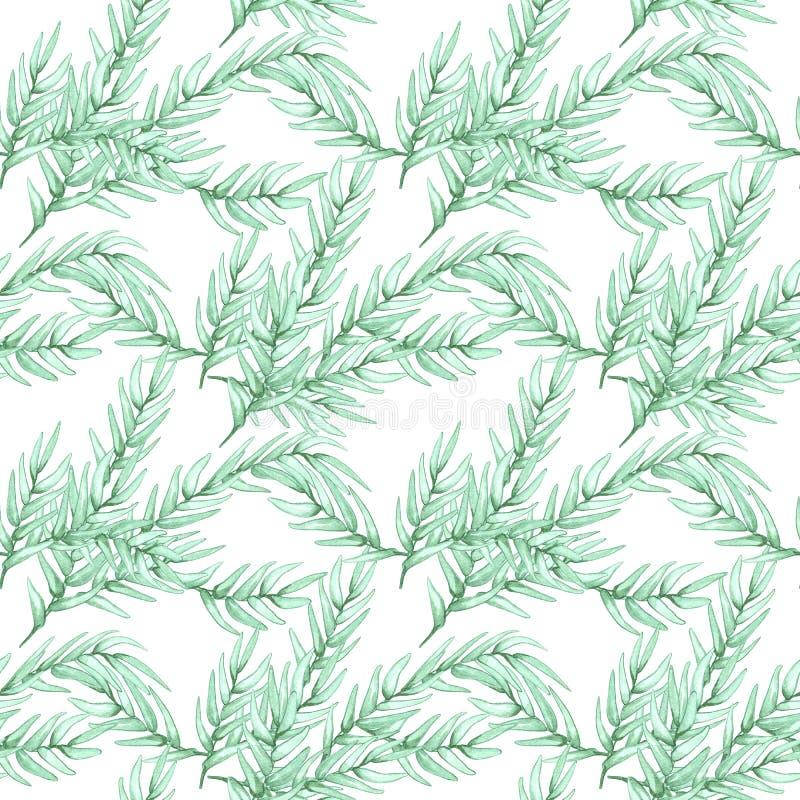 Modell för utdragen vattenfärg för hand sömlös av naturliga filialer för lövverk, gröna sidor på vit bakgrund stock illustrationer