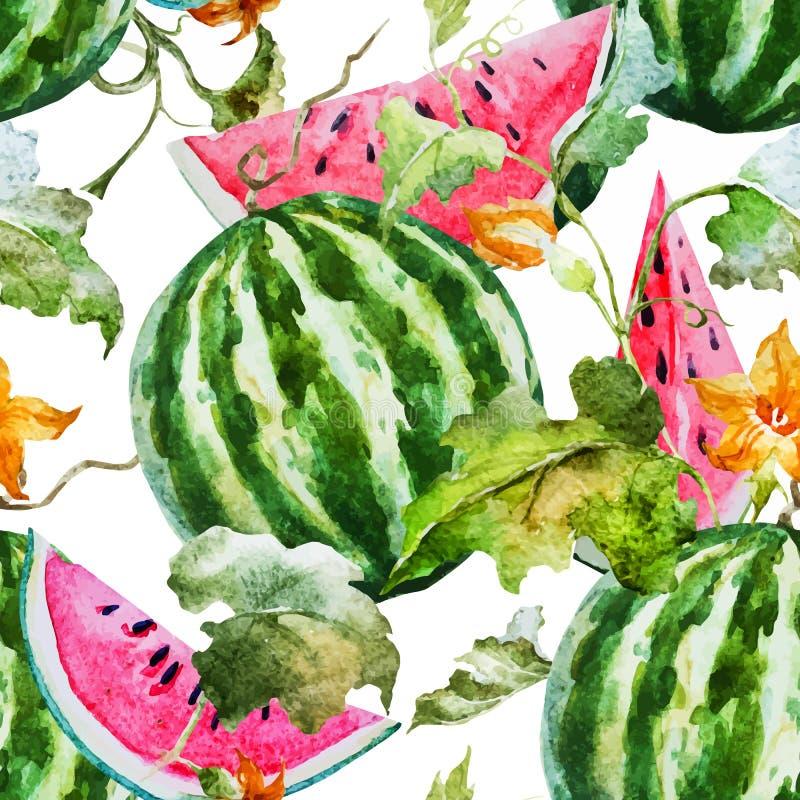 Modell för vattenfärgvattenmelonmelon vektor illustrationer