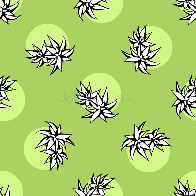 Modell för vektor för kaktusblomma sömlös Illustration för kaktus för vektorhand utdragen grön suckulent S?ml?s v?xttapet royaltyfri illustrationer