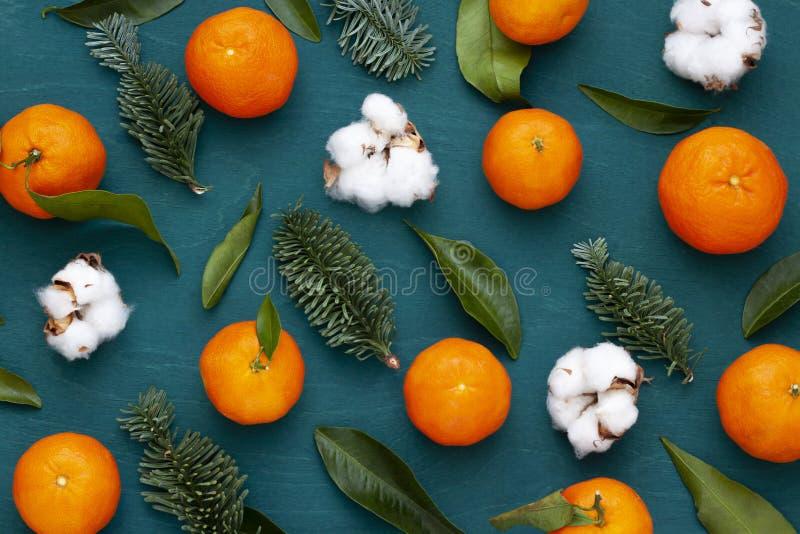 Modell för vinter för jul, för nytt år ljus trämed tangerin och bomullsväxter royaltyfri fotografi